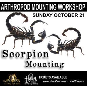 SCORPION MOUNTING WORKSHOP