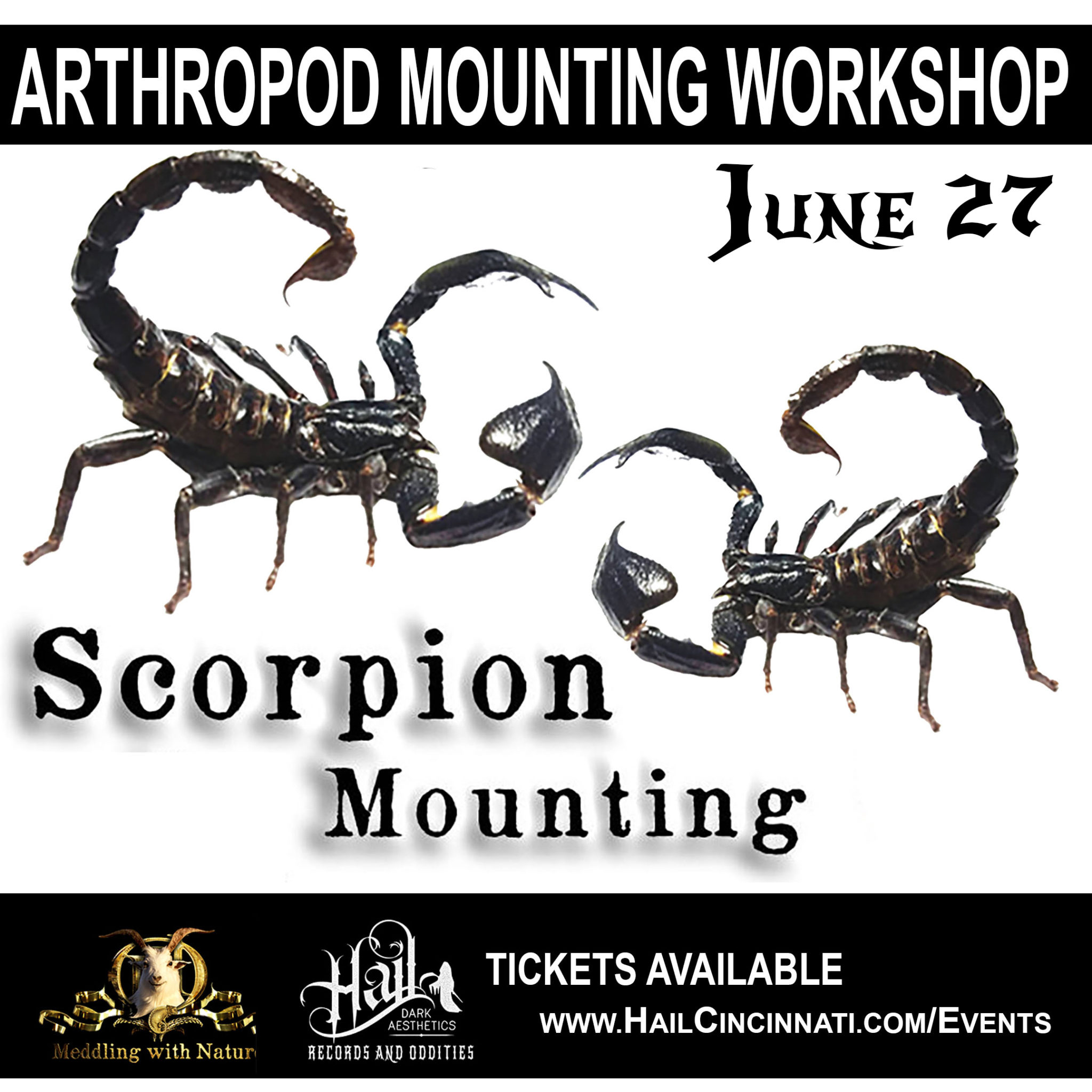 June 27, 2019 – Scorpion Mounting